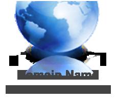 domain_menu